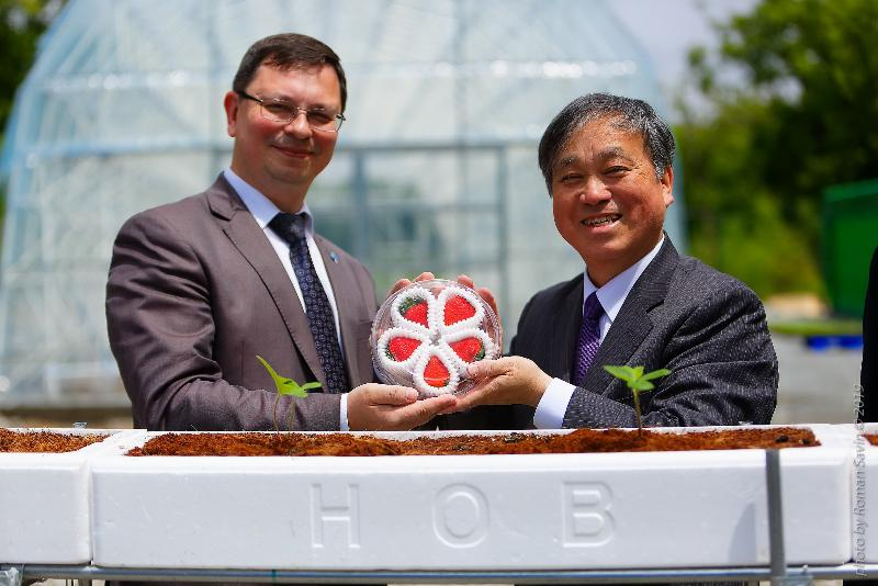 A greenhouse for the cultivation of strawberries using Japanese technologies was opened in FEFU