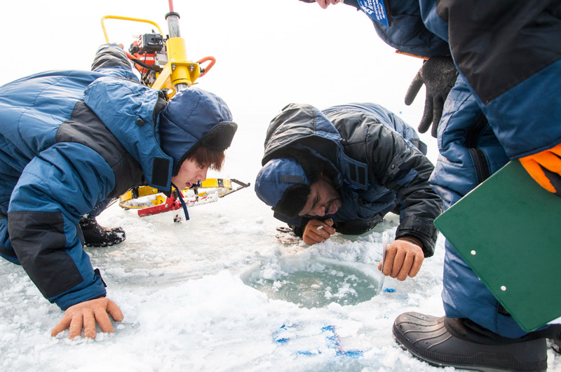 FEFU Winter School participants are exploring 50,000 m² of ice on Russky Island