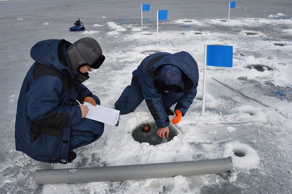Researchers of FEFU and Japan to develop new construction technologies in cold regions